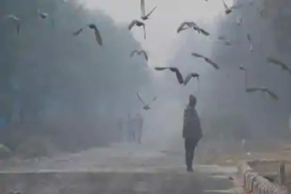 Minimum temperature in Delhi falls below 10°C-mark for the first time; Met says further chill expected from Sunday