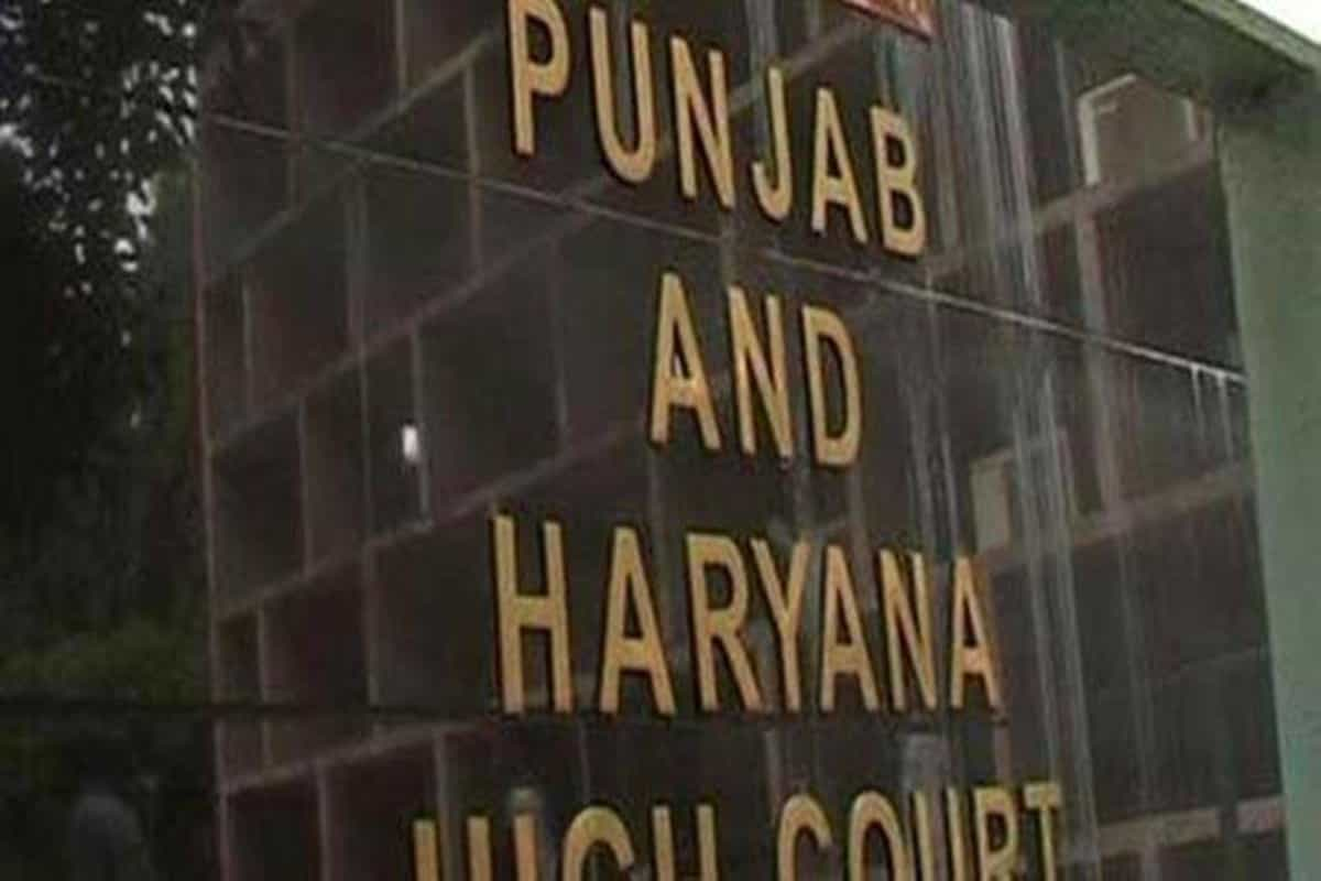 Punjab: HC allows 27 students declared ineligible for teaching posts to take written exam